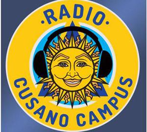 Logo Niccolo Cusano